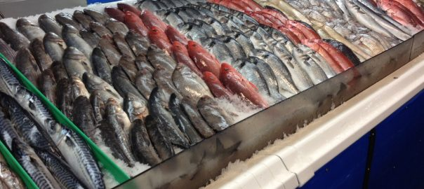 how to choose the best fresh fish