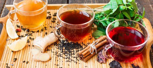 explore the world of tea