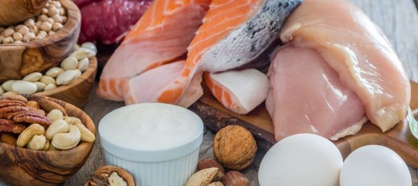 low carb foods that are high in protein